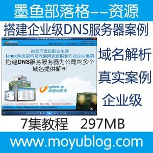 为公司搭建企业级DNS服务器真实案例精讲视频教程 图1