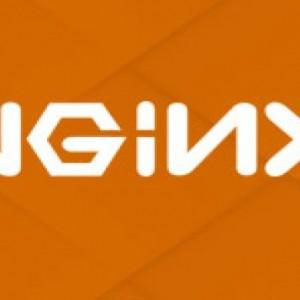 Nginx核心知识100讲视频教程 图1